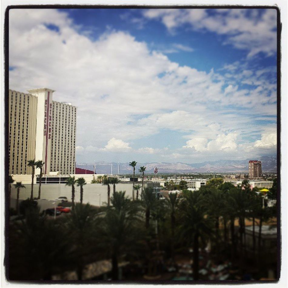 Waking up on my birthday looking out to this view♡ Goodmorning Morning Birthday View Lasvegas Happy Blessed  Palmtrees Circuscircus Clouds Bluesky Hiltonhotel