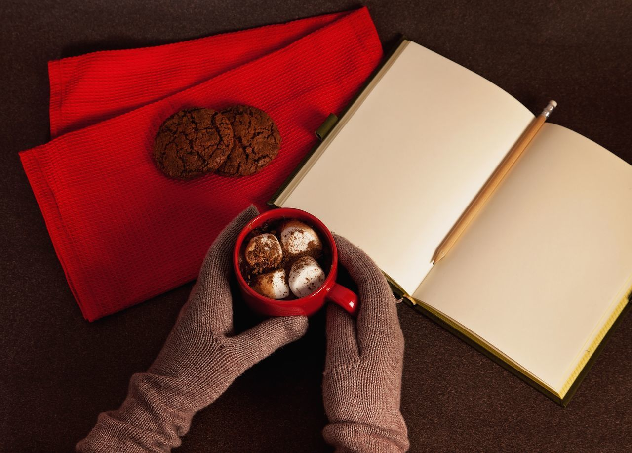 Always Be Cozy Holding Red Indoors  One Person Close-up Human Body Part People Day Hot Chocolate Chocolate Marshmallows Gloves Winter Warm Notebook Pencil Writing Drawing Human Hand Cold Copy Space Pages Studying