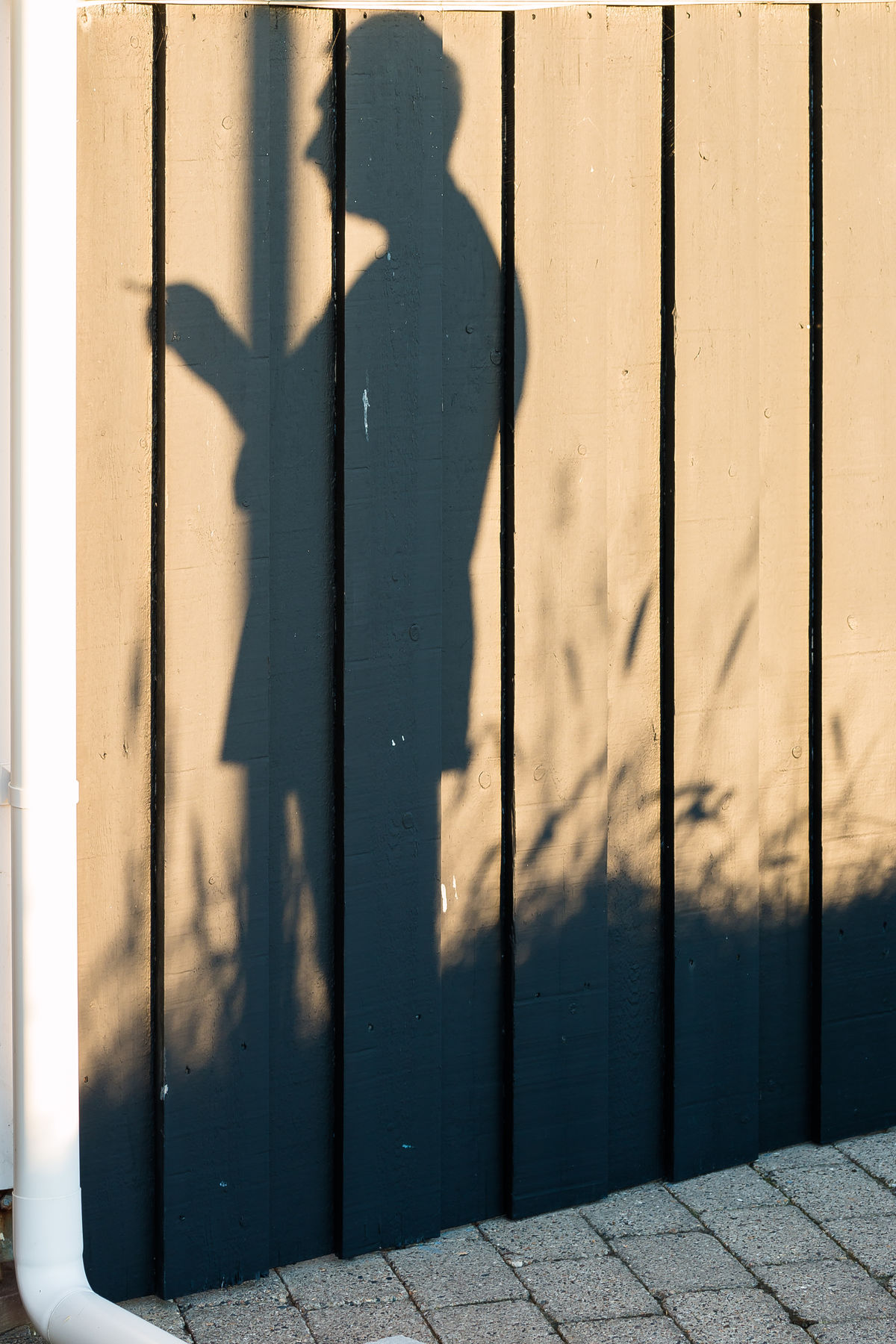 Summerday memories. A Shadow Of One's Former Self Close-up Day Down Spout Focus On Shadow Geradestehen Grass Human Body Part Human Hand Keep Calm Man Nusshain 04 17 One Person People Schatten Seiner Selbst Shadow Shadow Of A Man Standing Sunlight Take The Responsibility TCPM Vor Einer Wand Stehen Wooden Fence