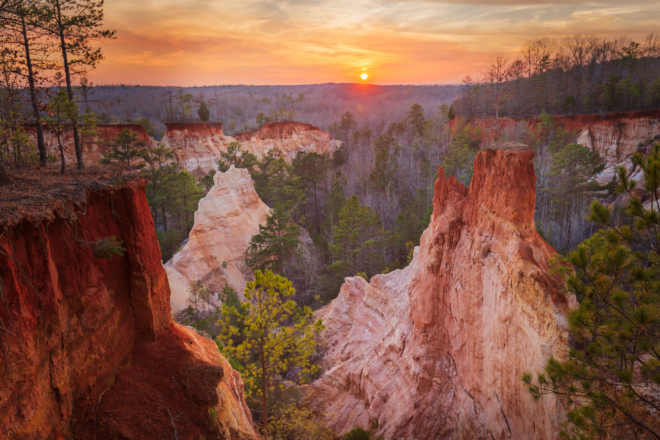 "Sunset in South Georgia at Providence Canyon. The canyon formation, made up of a kaleidoscope of coloured sands and clays, owes its existence to destructive early farming practices in the 19th century as is was unknown at the time that the undulating hills were made up of deep sand deposits below a very thin crust of clayey topsoil. Once the topsoil had been disturbed the natural elements did the rest with the canyon progressively deepening over the subsequent 150 years. The dramatic pinnacles which remain are sections of clay which the sand has eroded around. The erosion gullies reach depths of 150 feet (or 46m) and are referred to by the locals as Georgia's ""Little Grand Canyon"". Providence Canyon State Park, Georgia, United States of America. Love Life, Love Photography America Canyon Clay Colour Coloured Day Forest Georgia Grand Landscape Nature Outdoors Park Pinnacles Providence Rock Formation Sands Southern State Taking Photos Tranquil Scene Tree Tree United States USA The Great Outdoors"