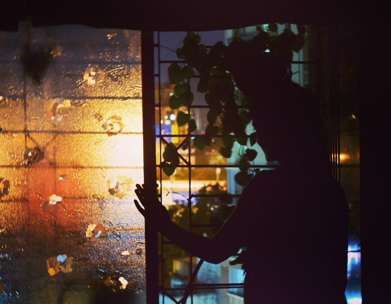 Rear View Of Woman Looking Through Window At Night