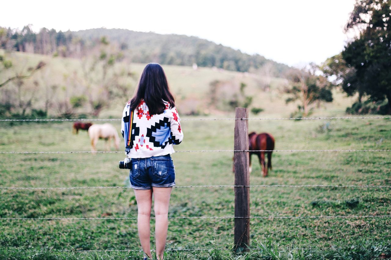 A day in the farm The Traveler - 2015 EyeEm Awards Wanderlust Nature Natural Green Farm Countryside Portrait Color Portrait Colors
