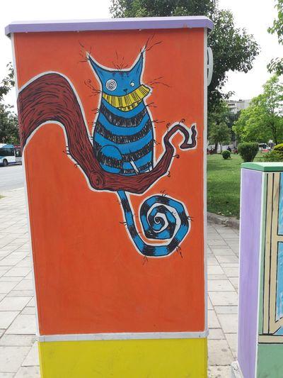 Chesshire Aliceinwonderland Street Art/Graffiti Graffiti Outdoors Day No People Thecat Crazy Art Colors UrbanART Imnotcrazy Roads Brances Nofilter Original Tirana Albania