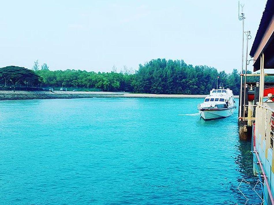 Singapore ➡ Bintan 🚢 Vygetaway Sea Blue Ferry Terminal Forest Waiting Departure Singapore ASIA