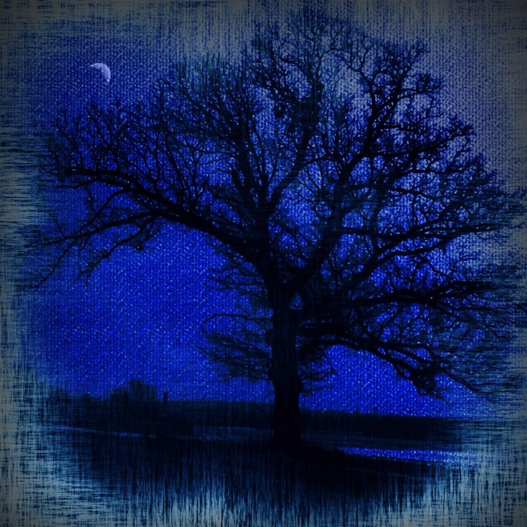 Goodnight EyeEm Goodnight Rural Scenes Canvas AMPt_community