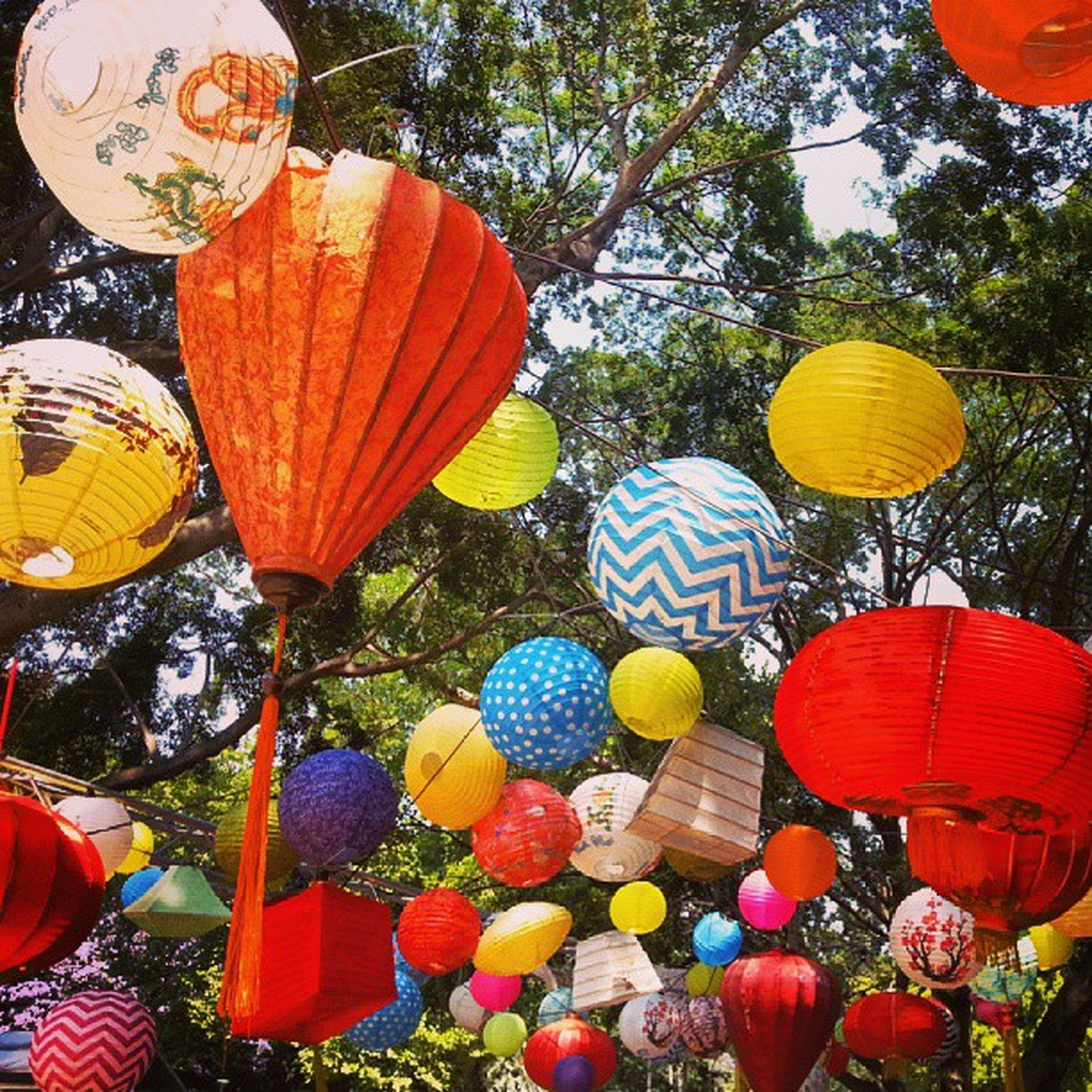 multi colored, tree, celebration, decoration, lantern, cultures, hanging, tradition, variation, balloon, abundance, traditional festival, outdoors, lighting equipment, day, large group of objects, low angle view, colorful, hot air balloon, nature