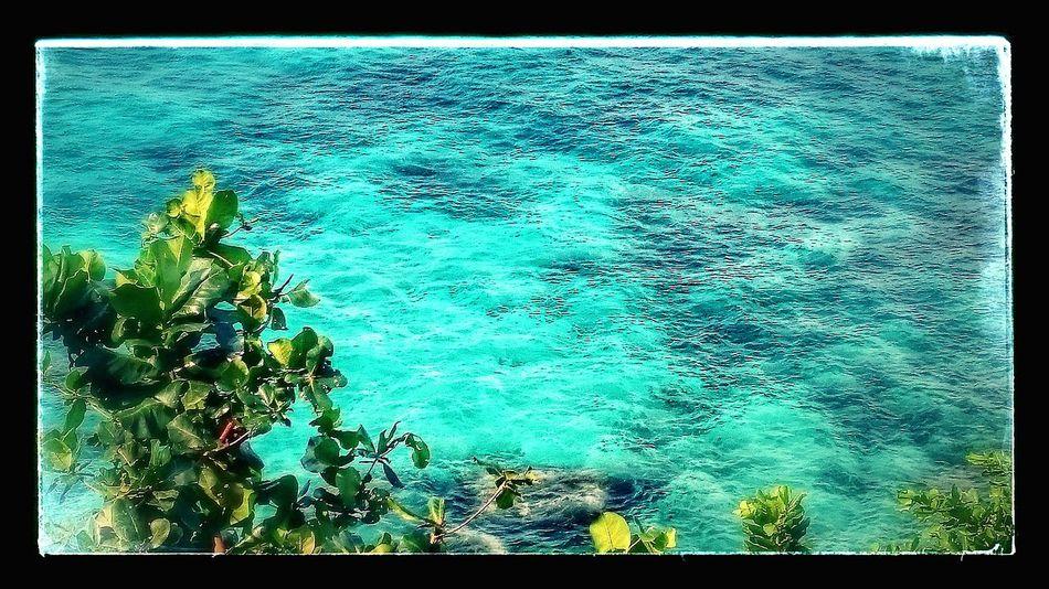Sunny Day Amazing Wiev Beautiful Place Beautiful Surroundings Nice Atmosphere