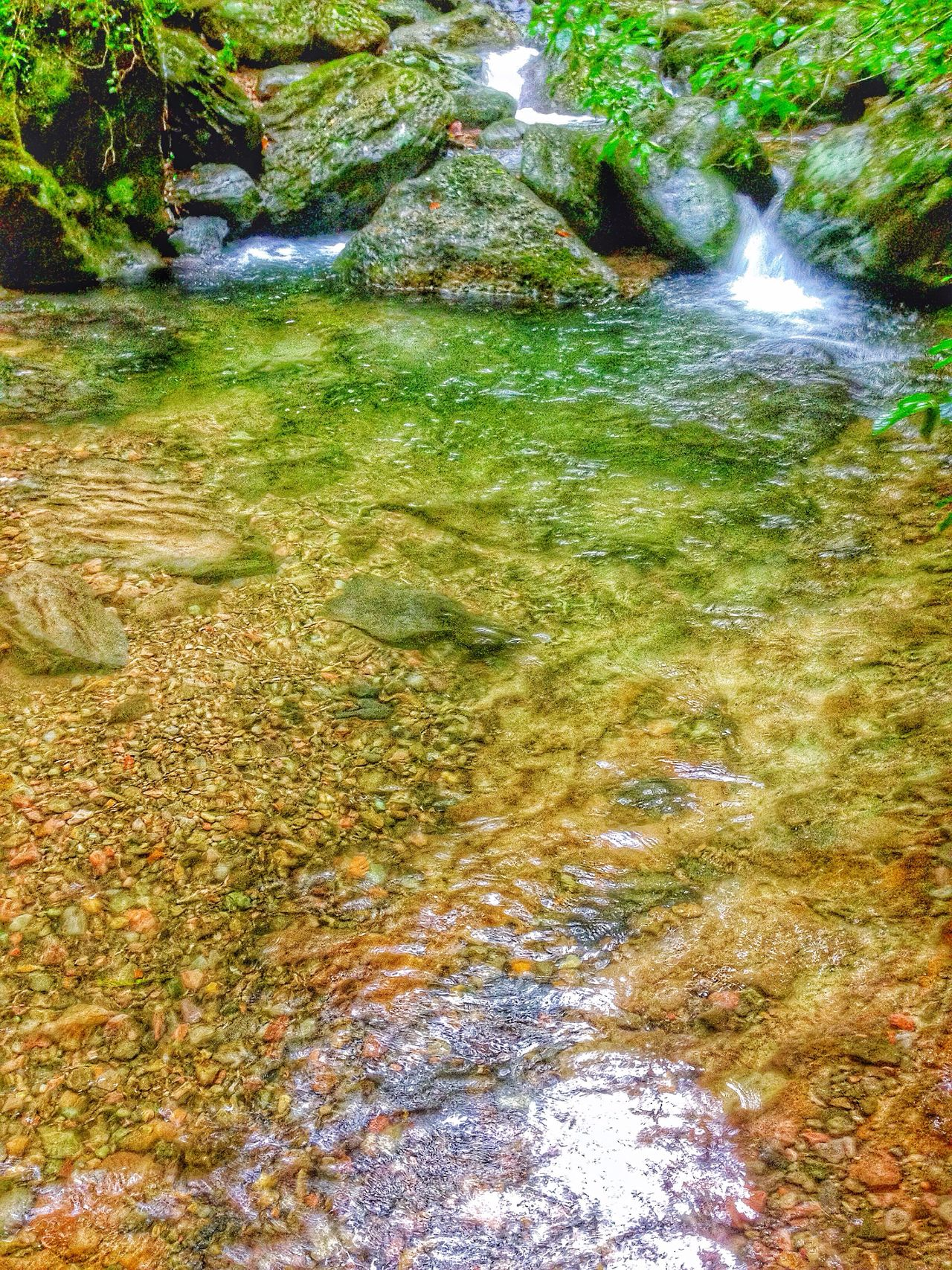 Have already taken many pictures of the waterfall, now I'm walking down to the parking lot, crystal clear, cool mountain water! The Great Outdoors - 2016 EyeEm Awards Check This Out Outdoor Photography Creekside Trail Relaxing Cheese! Near In Sasebo Japan Scenery ALL ABOARD!