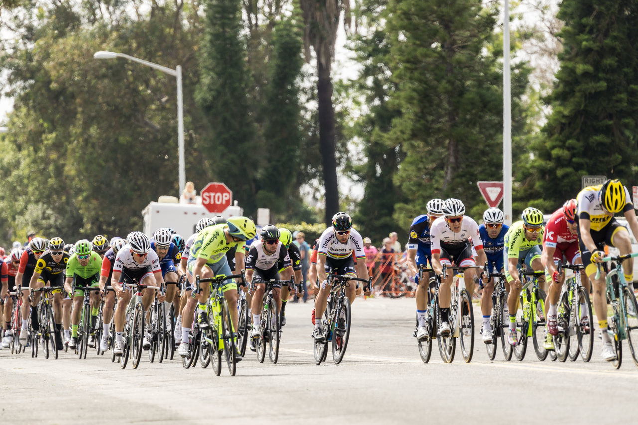 Sprint to the finish of Stage 1 of the Tour of California. In the center is Peter Sagan (TINKOFF) of Slovakia, the current world champion who won. Bike Race Day Green Color Growth In A Row Land Vehicle Leisure Activity Lifestyles Mode Of Transport Outdoors Parked Parking Road Stationary Tree