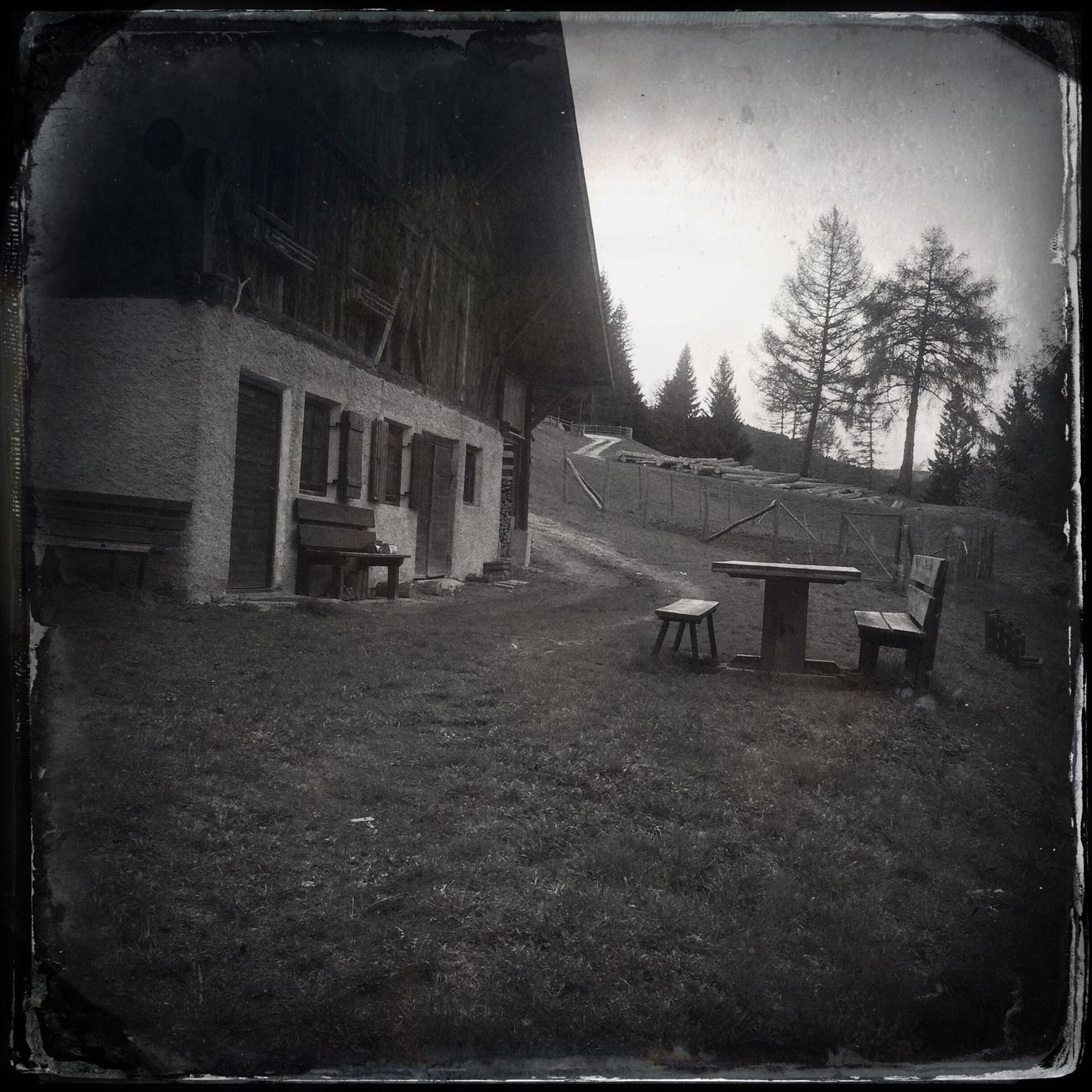 Somewhere in the woods The_guido Hipstamatic Blackandwhite