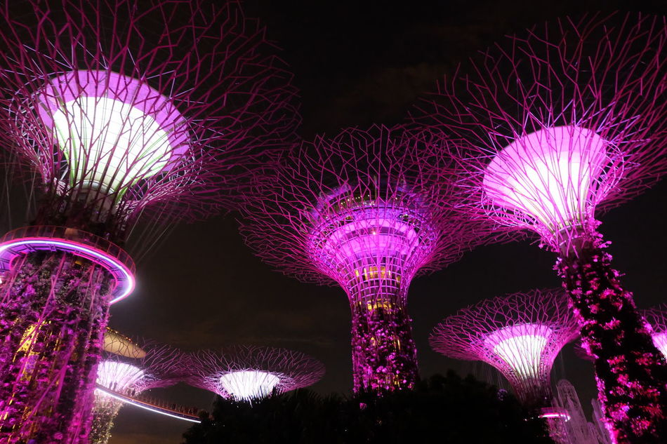 Futuristic No People Illuminated Cyberspace Relaxing Playfullights Night Colors Futuristic Nightscape Nightshot Night View Night Sky Night Life Nightlife Nightphotography Singapore Ferris Wheel