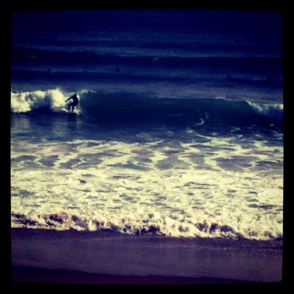 enjoy surf Sea Surfing Surfin