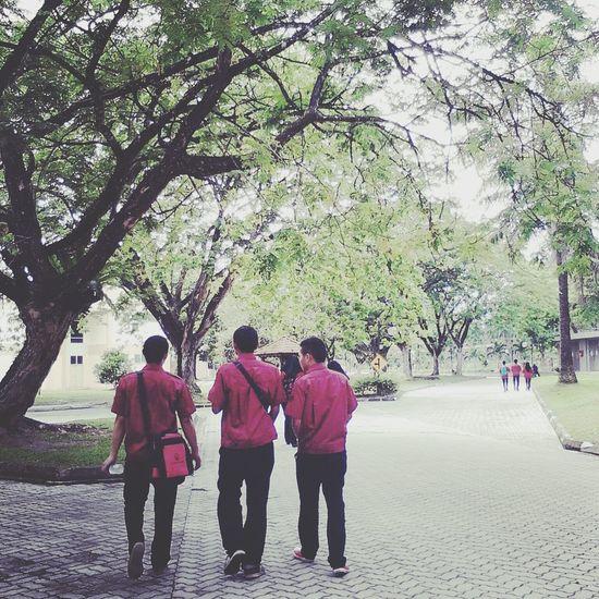 Walking Together Friends Friendship