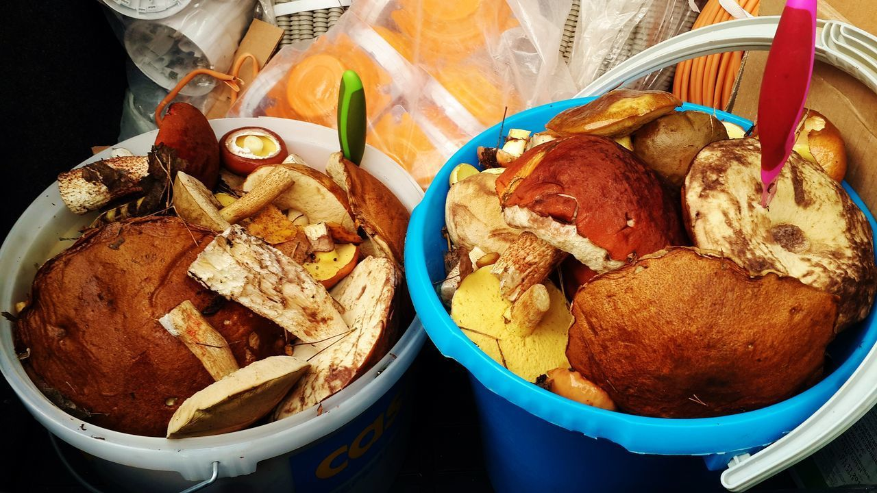 Не для маркета, грибники оценят😄😄😄 Mushrooms 🍄🍄 Forest Food EyeEmNewHere EyeEm грибы подосиновики грибнойсезон маслята