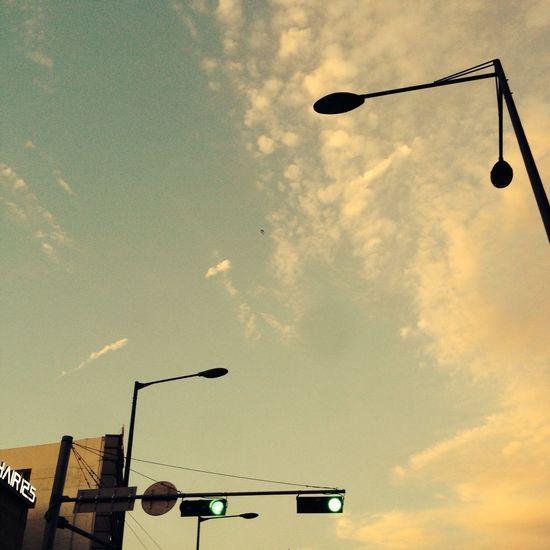 Blue Sky Enjoying Life