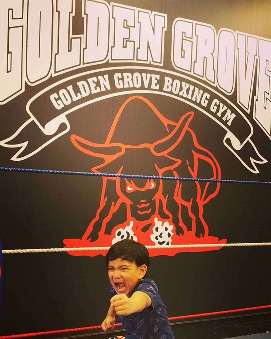 The new face of Golden Grove Boxing Gym. 😂 Incharacter Boxer Kids Goldengroveboxinggym Dadsgym Imaginemax Posermax Keepingupwithmem