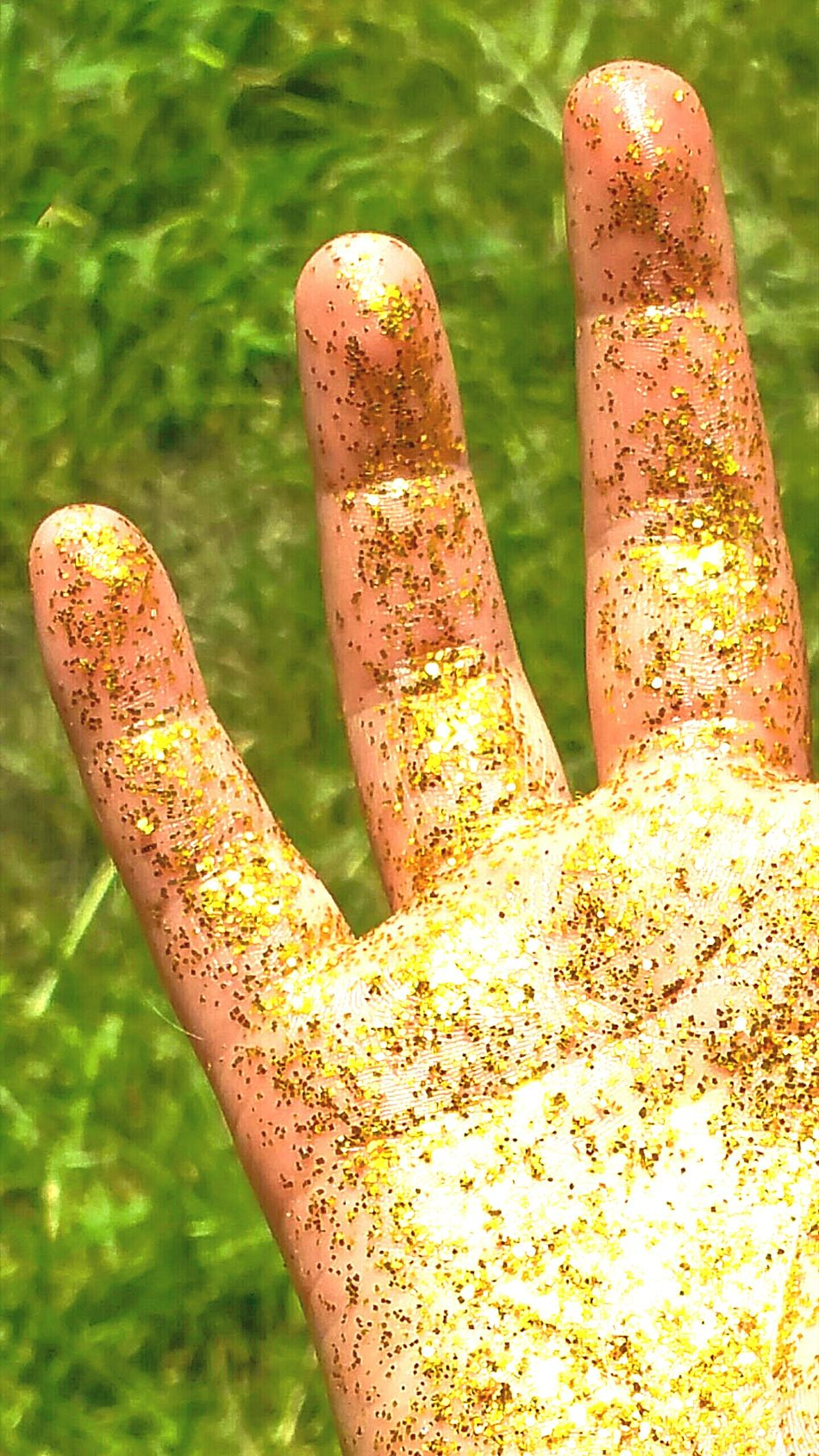 Hand Fingers Gold Golden Bright Colors Glowing Glowing Hands Gold Colored Reflections Sunshine Glittering Shiny Body Part Glitter & Sparkle Glittery Glitter Gold Glitter Grass Outdoors Close-up All That Glitters Rich Tone Beautiful Hands Green Background Grass Background