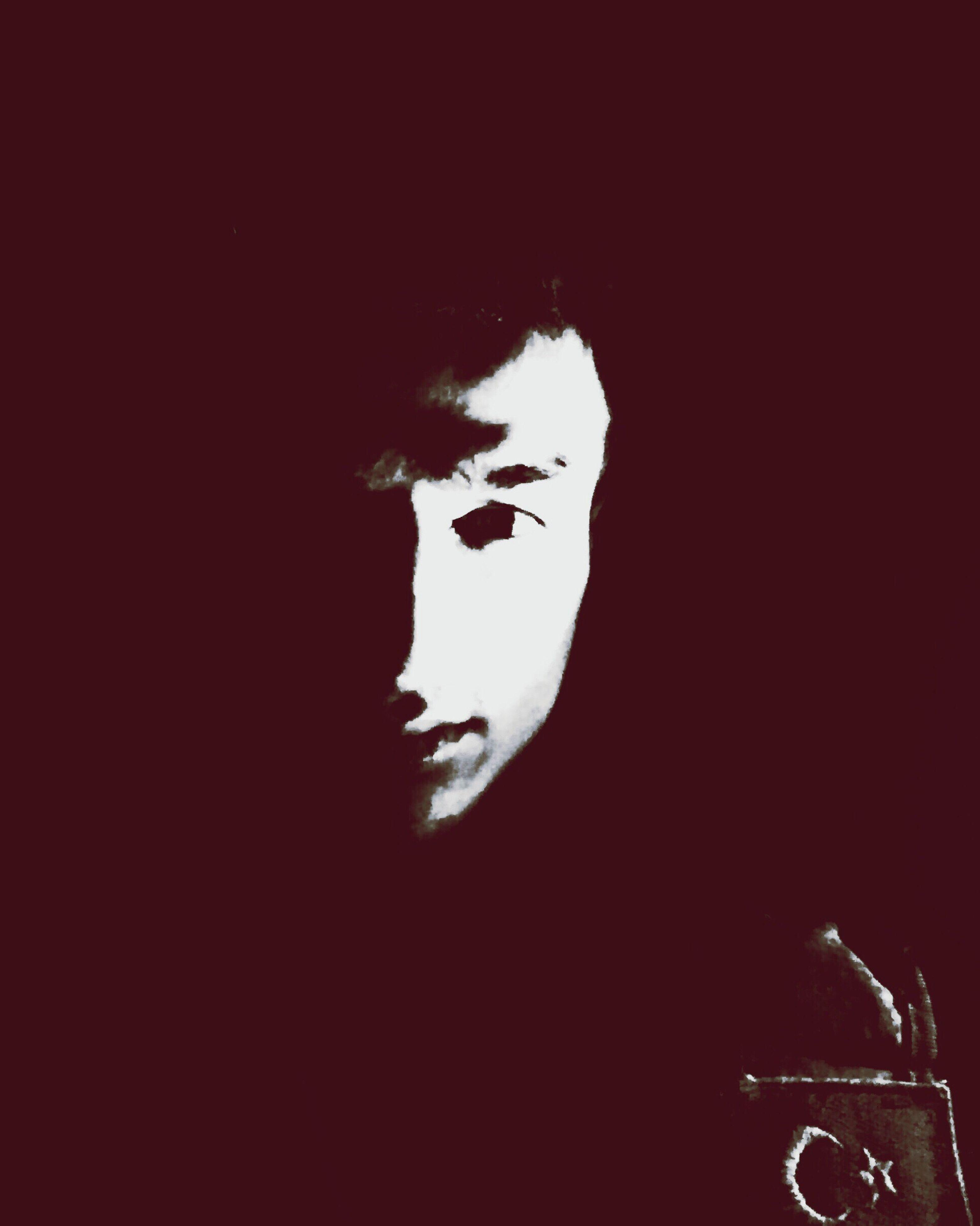 indoors, dark, nature, darkroom, profile, young adult