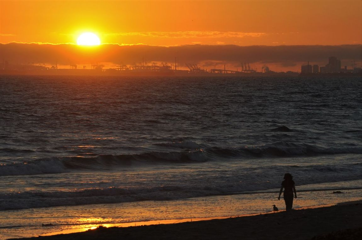 EyeEm Selects Fog Bank Ocean View Oceanside Beach Beauty In Nature Full Length Horizon Over Water Leisure Activity Lifestyles Nature Ocean Ocean Photography Orange Color Real People Scenics Silhouette Sky Sun Sunlight Sunset Tranquil Scene Tranquility Water Wave