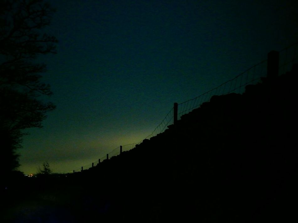 The Road To Work Silhouette Sky Nature Night Beauty In Nature Tree Outdoors Tranquility Star - Space No People Scenics Astronomy Galaxy