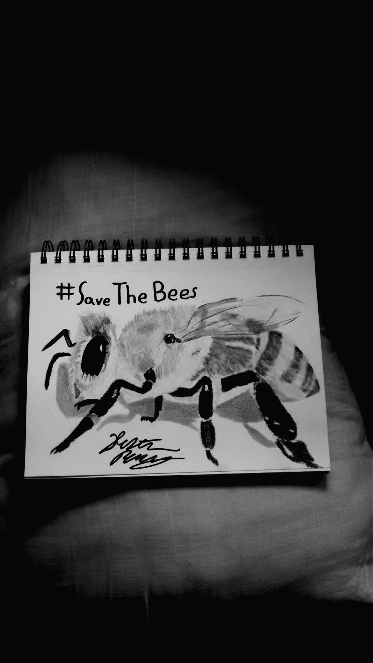 First post ig Art Artist Blackandwhite Savethebees Gay Teen