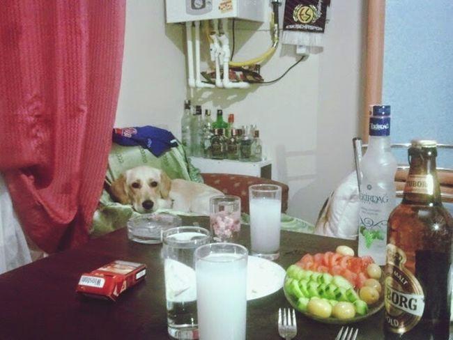 Mydog♡ Raki Sofrasi Dertlestik Eskişehir Tepebasi şirintepe Mahallesi Alkolizm Alkol Enjoying Life