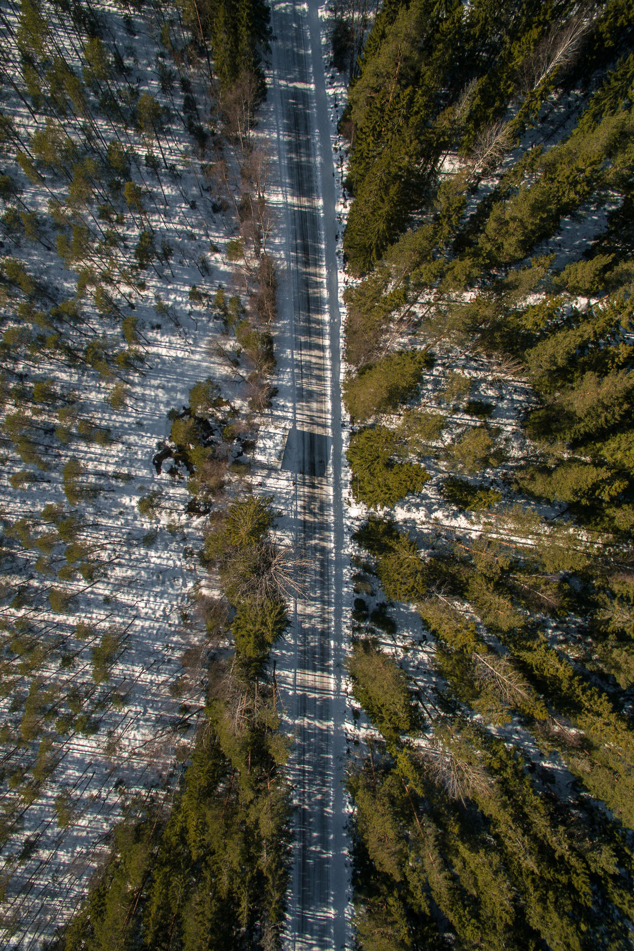 Aerial View Beauty In Nature Day Drone  Dronephotography Drones Finland FlyHigh Flying High Forest Nature No People Nuuksio Outdoors Pinetrees Road Scenics Top Perspective Top View Topshot Tranquility Tree Tree Water Flying High Flying High
