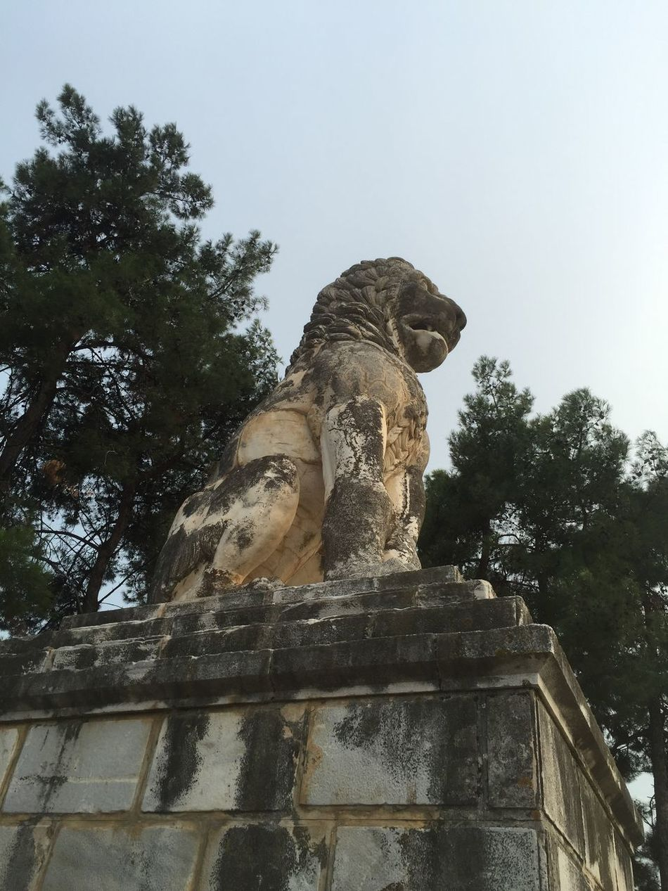Lion of Amphipolis. The tumb from 4 century BC. Could be seen by the old National road from Kavala to Thessaloniki. Greece Photos Sculpture Art Statue Memorial Outdoor Photography Historical Monuments Animal_collection Animal Love Animal Themes