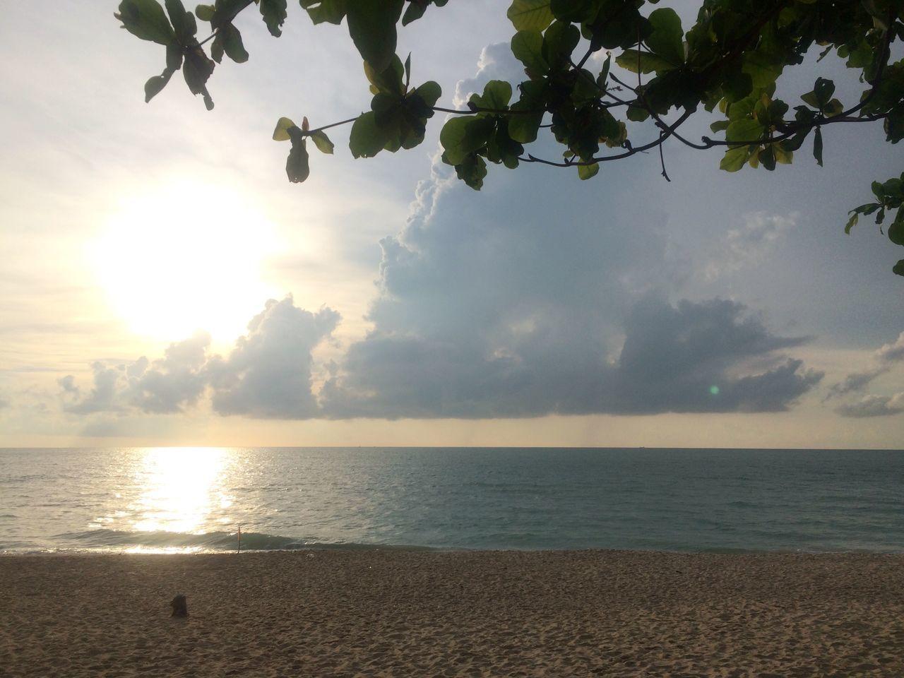Sun Morning Beach Sea Sand Light Morning Light Tree Leaves Thailand Nakhon Si Thammarat Khanom South Peaceful Landscape Nature