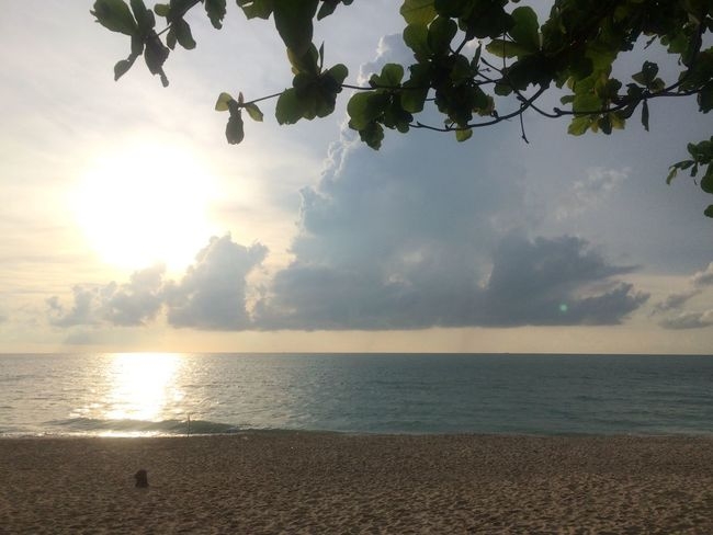Sun Morning Beach Sea Sand Light Morning Light Tree Leaves Thailand Nakhon Si Thammarat Khanom South Peaceful Landscape Nature