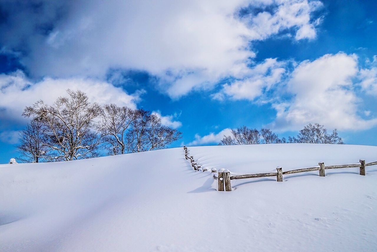 snow, winter, cold temperature, white color, nature, tranquil scene, tranquility, weather, beauty in nature, railing, outdoors, landscape, sky, scenics, cloud - sky, day, no people, tree, blue, bare tree