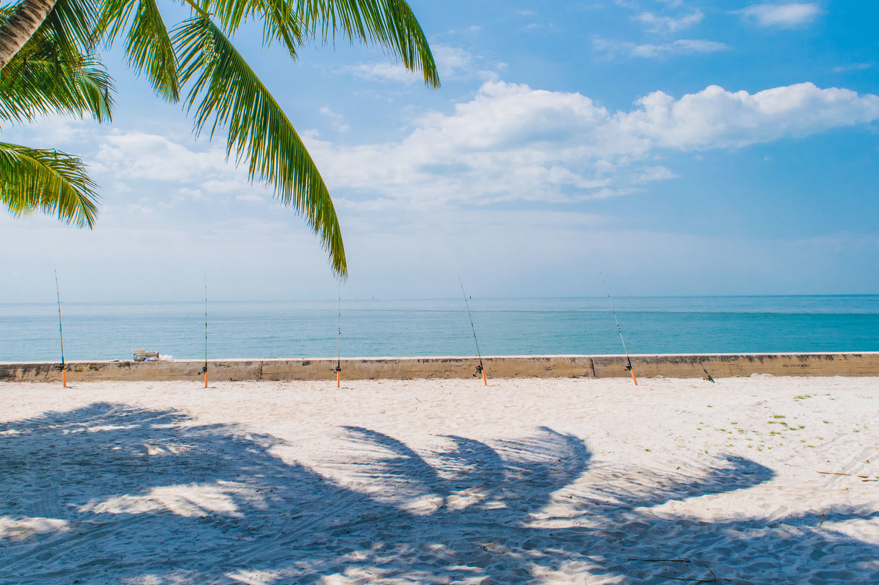 Beach Beach Life Beach Photography Beachphotography Beautiful Beauty Beauty In Nature Blue Sky Landscape Landscape_Collection Landscape_photography Miami Nature Nature Photography Nature_collection Ocean Palm Palm Tree Palm Trees Relaxing Sand Sea Sky And Clouds Sunny Tropical
