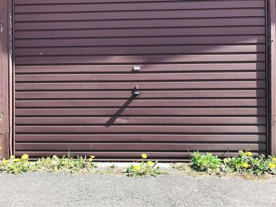 Garage Door Dandelions Shutter Architecture Built Structure Corrugated Iron Building Exterior No People Corrugated Outdoors Day