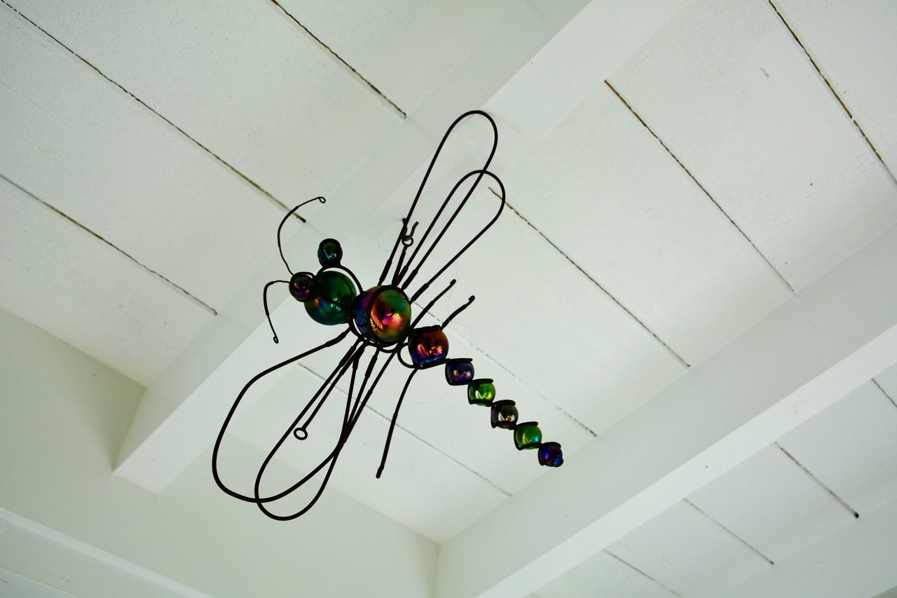 Hanging Around Wire Art SunCatcher  Suncatchers No People Insect Dragonfly Rustic Lieblingsteil Overhead Looking Up