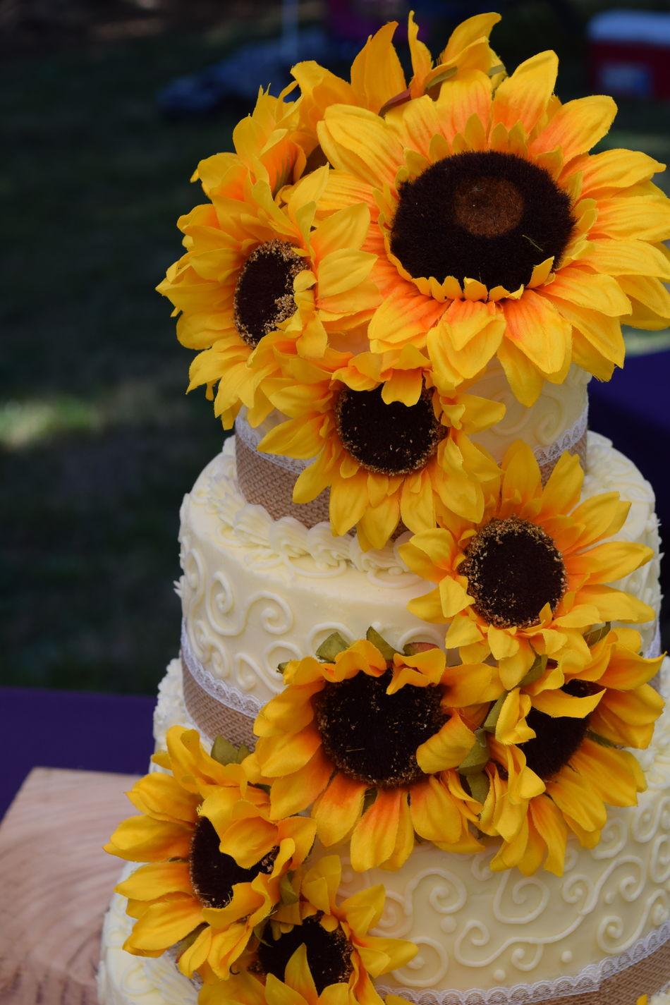 Beautiful stock photos of wedding cake,  Cake Tier,  Celebration,  Close-Up,  Cultures
