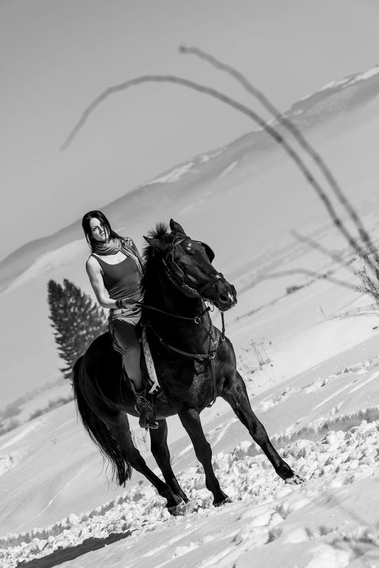 It's Cold Outside but she is more cold inside(1/2) Horses Horse Eyemphotography Eyem Gallery Eyem2016 Showcase: January Nikon D810 Nikonphotographer Romania Eyem Best Shots Winter Romanian Girl Romaniangirl Romania ! Romanian  Miss Tanase Ana Maria