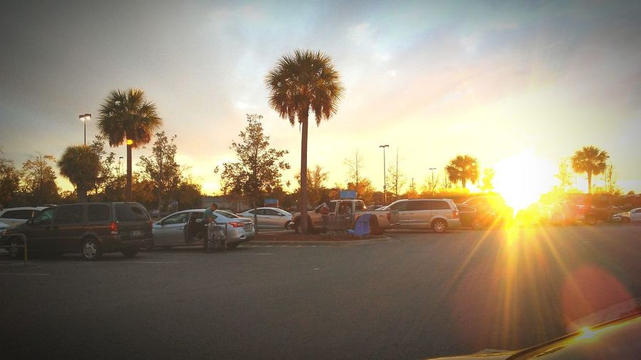 Walmart parking lot, the sun is setting..... I was in there way to long... Car Cloud - Sky Sunset Tree Outdoors Day Sunlight Be. Ready.