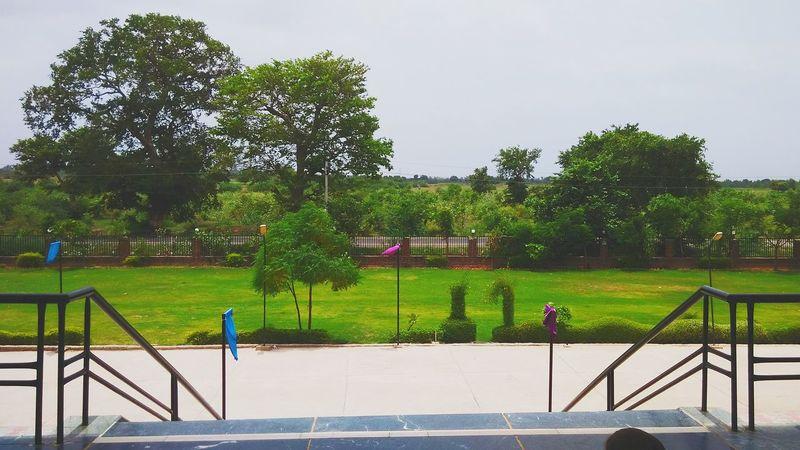 Rai University Ahmedabad Nafure Lover