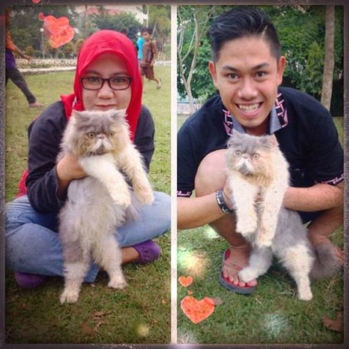 Love love cat Love Catlover Feaknose Extream
