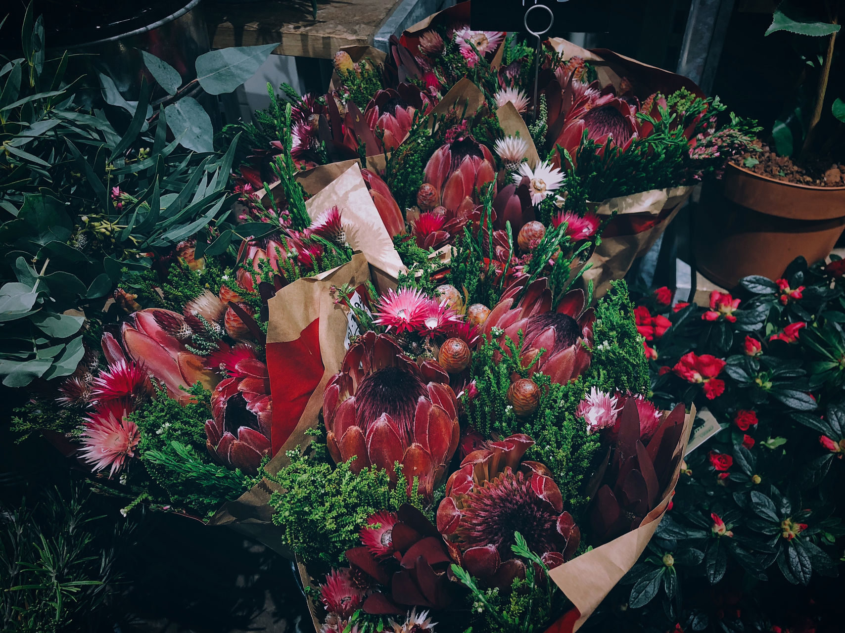 Life Nature Plant beauty in Nature bouquet close-up colorful flower flower head Flower Market flower shop fragility Freshness gift Growth high angle view lifestyles multi colored petal Red rose - flower spring spring flowers springtime variation