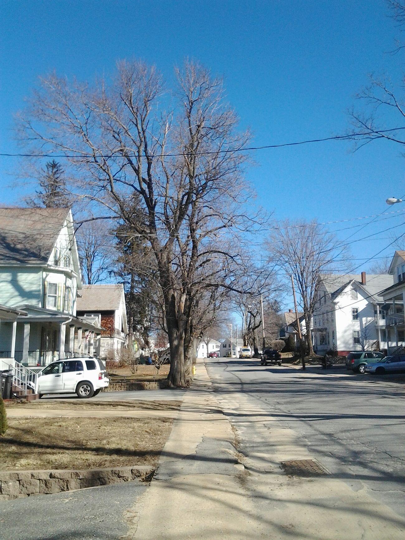 Pictureoftheday Autismawareness Massachusetts Streetphotography Picsforautism