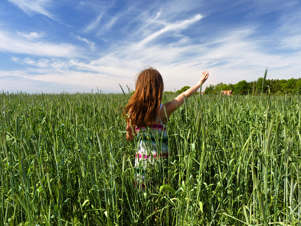 sky, field, long hair, one person, nature, cloud - sky, real people, growth, agriculture, leisure activity, carefree, women, tranquility, day, outdoors, lifestyles, rural scene, beauty in nature, grass, young adult, adult, people