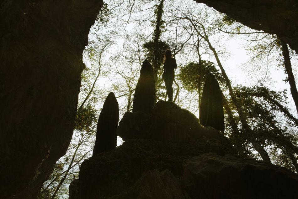 Portrait Spirituality Tree Outdoors Nature Wilderness Occult Grain Forest Non-urban Scene Weird