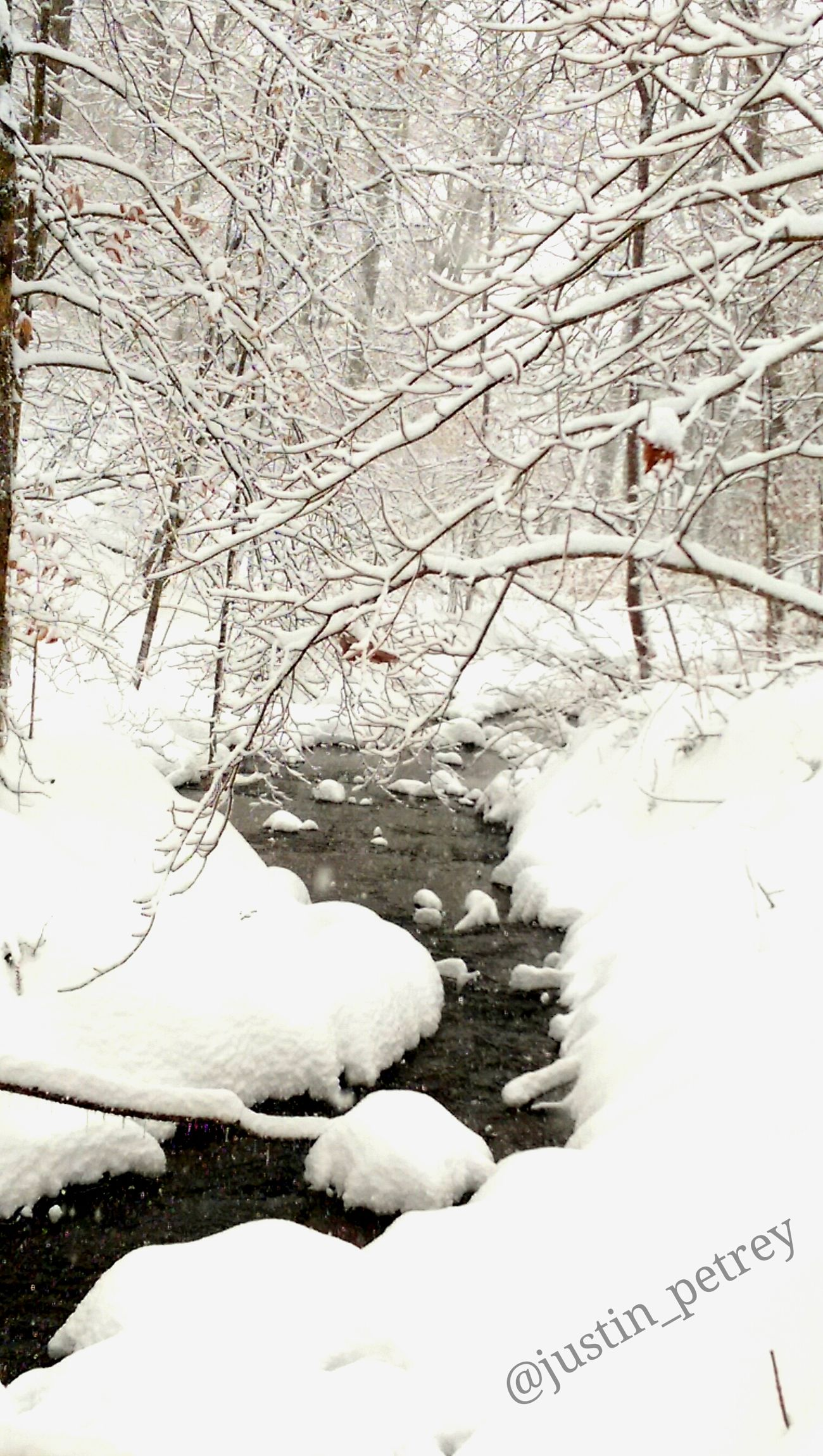 Kentucky  Kentuckynative Nature Naturelovers Nature_collection Snow Snow ❄ Snow Day Water Water_collection Jonas Snowpocalypse Winter