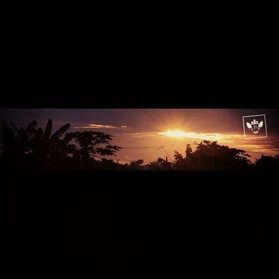 Sunset Nature Jiniuskonxeptsphotography Photography