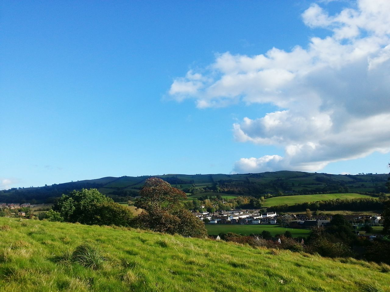 Blue Sky Nature Grass Scenics Landscape Cloud - Sky Outdoors Agriculture Mountain Tree Beauty In Nature No People Day Wales Newtown Powys Hills Britain Green Color Houses