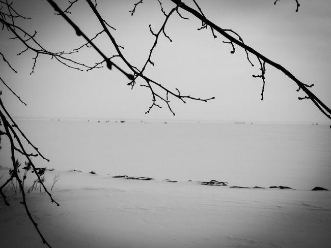 Ice Fishing Lake Nipissing Nature Outdoors Scenics Tranquility Weather Winter