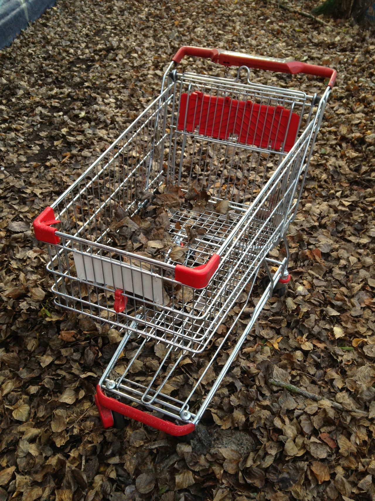 Abandoned Autumn Autumn Leaves Day Discarded Fall Leaves No People Outdoors Shopping Cart Shopping Trolley