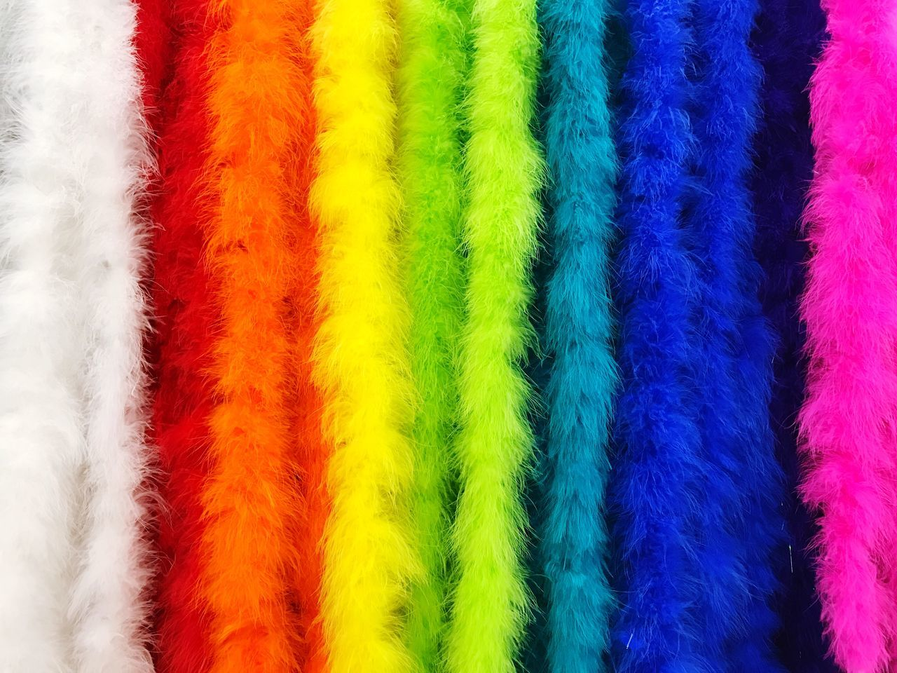 Multi Colored Red Full Frame Close-up No People Variation Choice Backgrounds Indoors  Day Colorful Colour Of Life Fur furpect