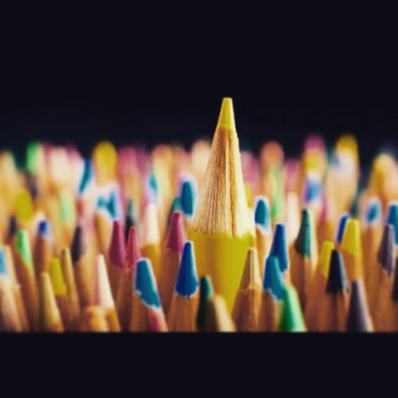 Stand Out From The Crowd Colorsplash Colorpencils Standout